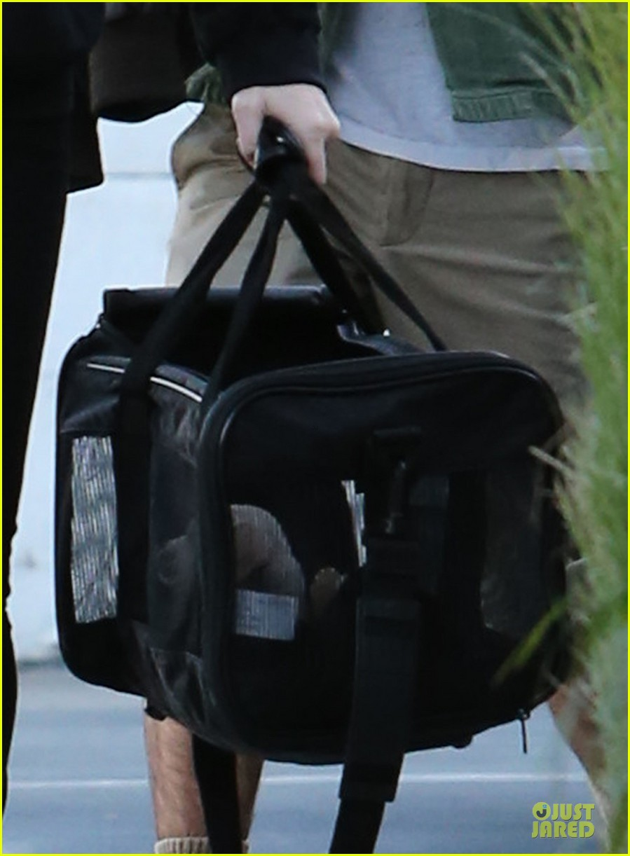 miley cyrus recording studio session with pet pooch bean 042784919