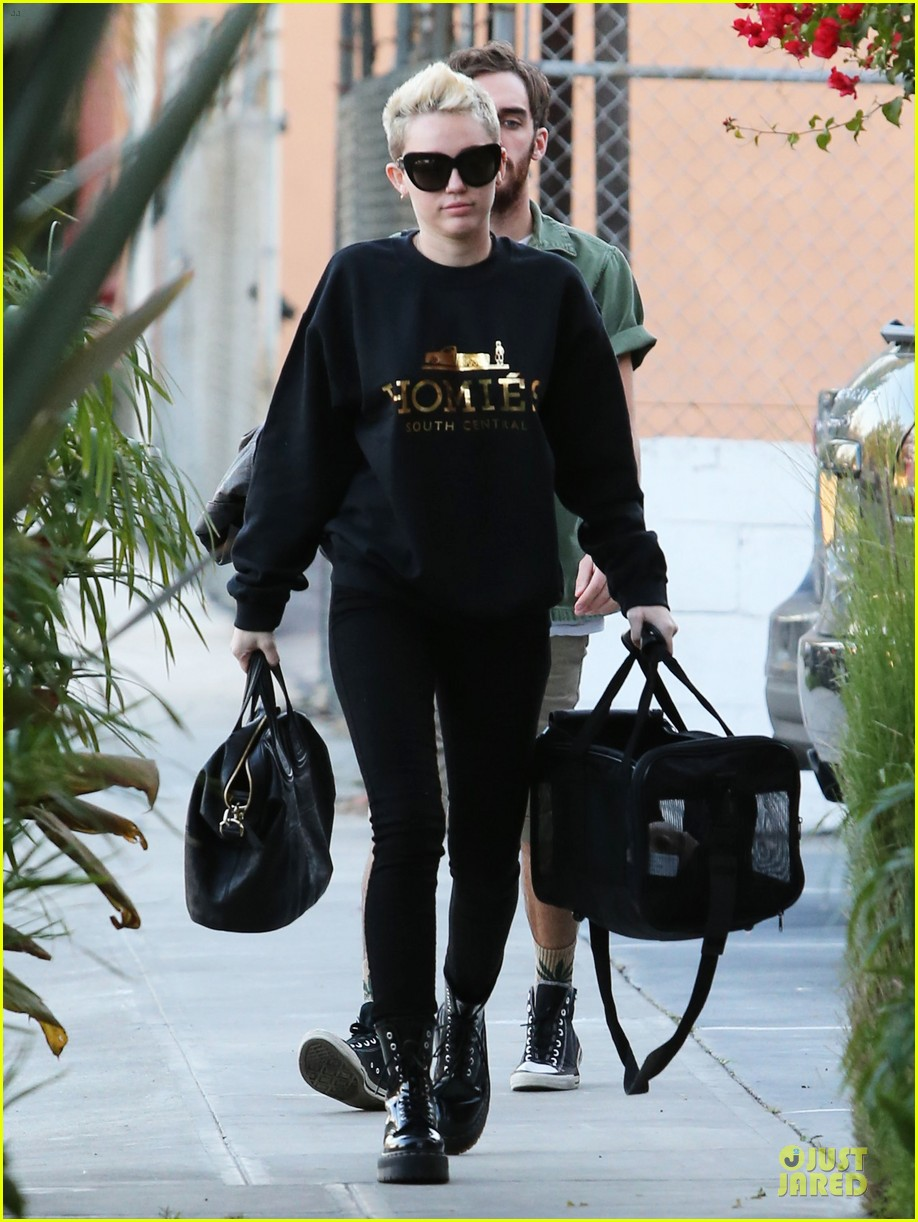 miley cyrus recording studio session with pet pooch bean 052784920