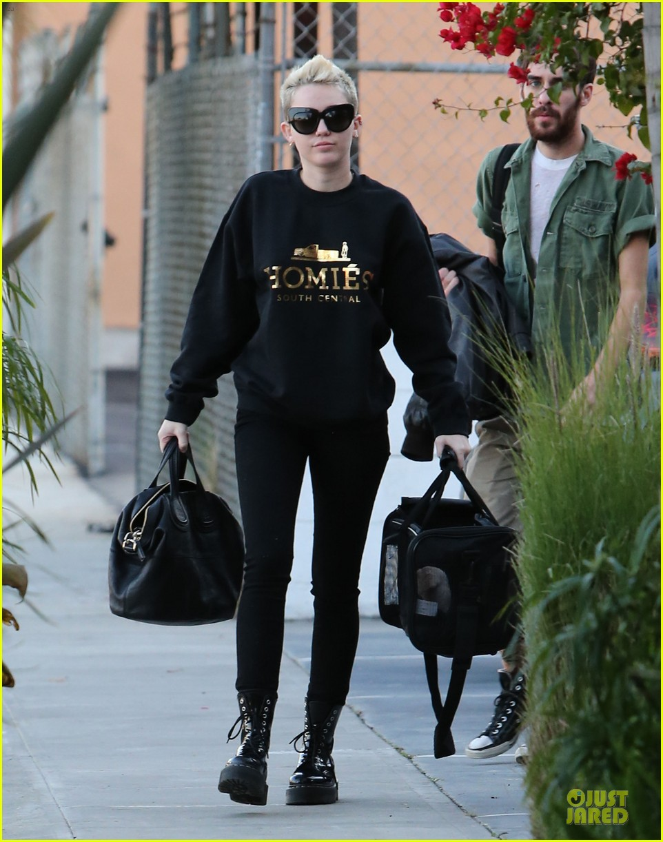 miley cyrus recording studio session with pet pooch bean 072784922