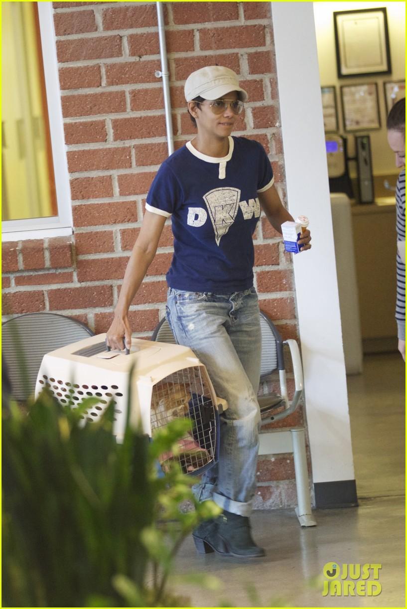 halle berry vet visit with pet cat 112798024