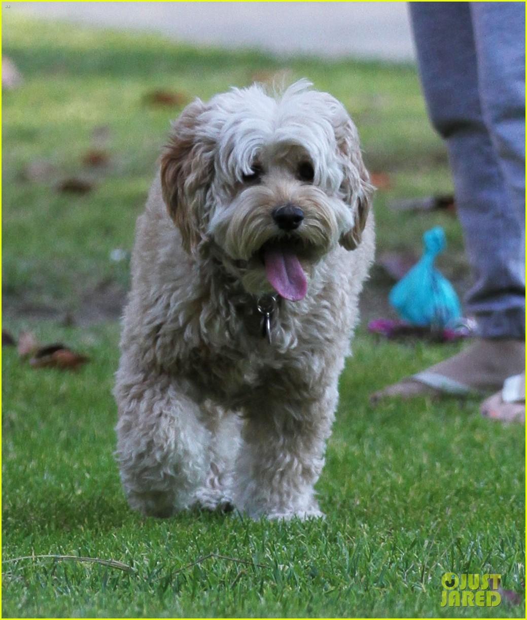 minka kelly dog park fun with chewy 042795936