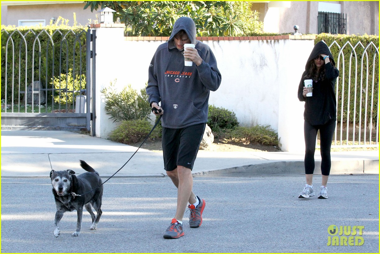 mila kunis ashton kutcher doggy duty duo 022786236