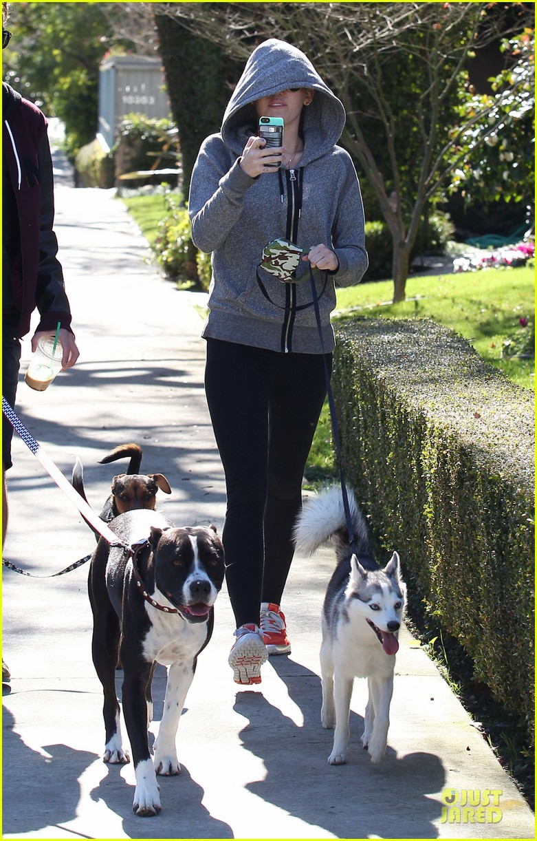 miley cyrus hoodie walk with pet pooch 122800383
