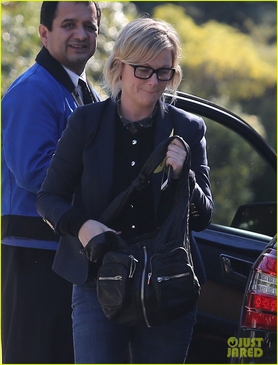 amy poehler birthday party with archie abel 102795271