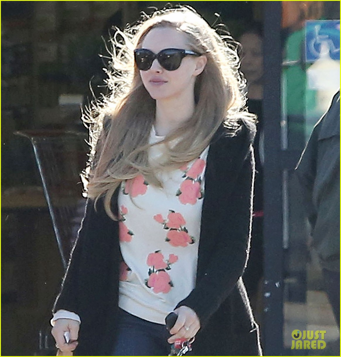 amanda seyfried my life is great 042792597