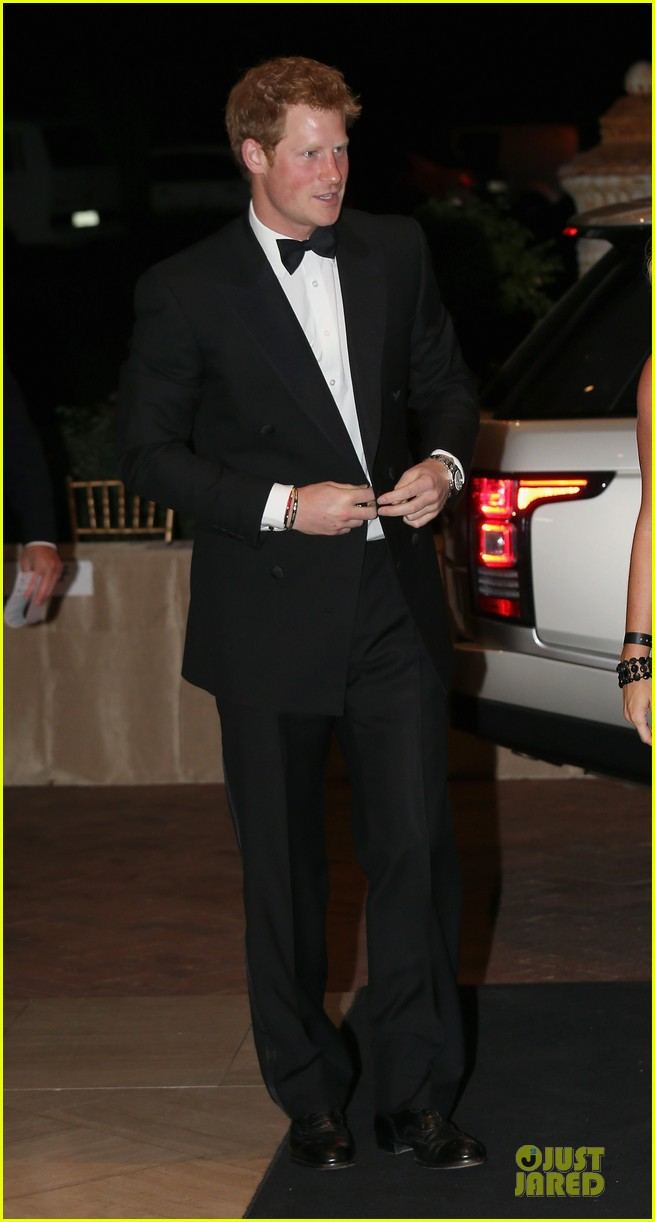 prince harry sentebale gala dinner 012821881
