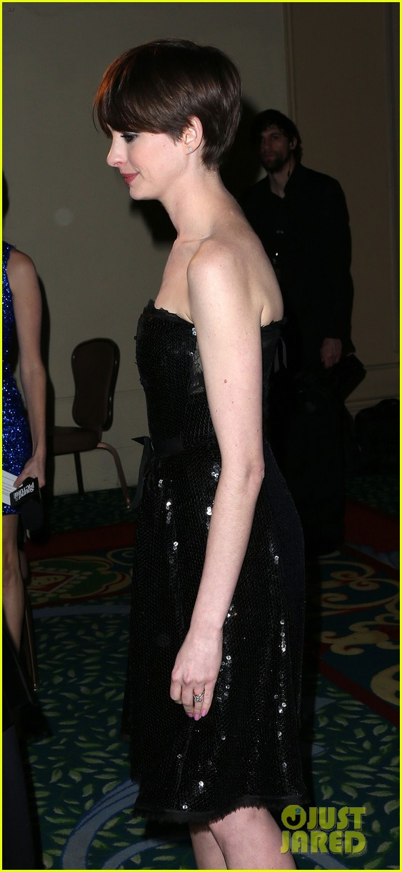 anne hathaway cinema audio society awards 2013 092813776