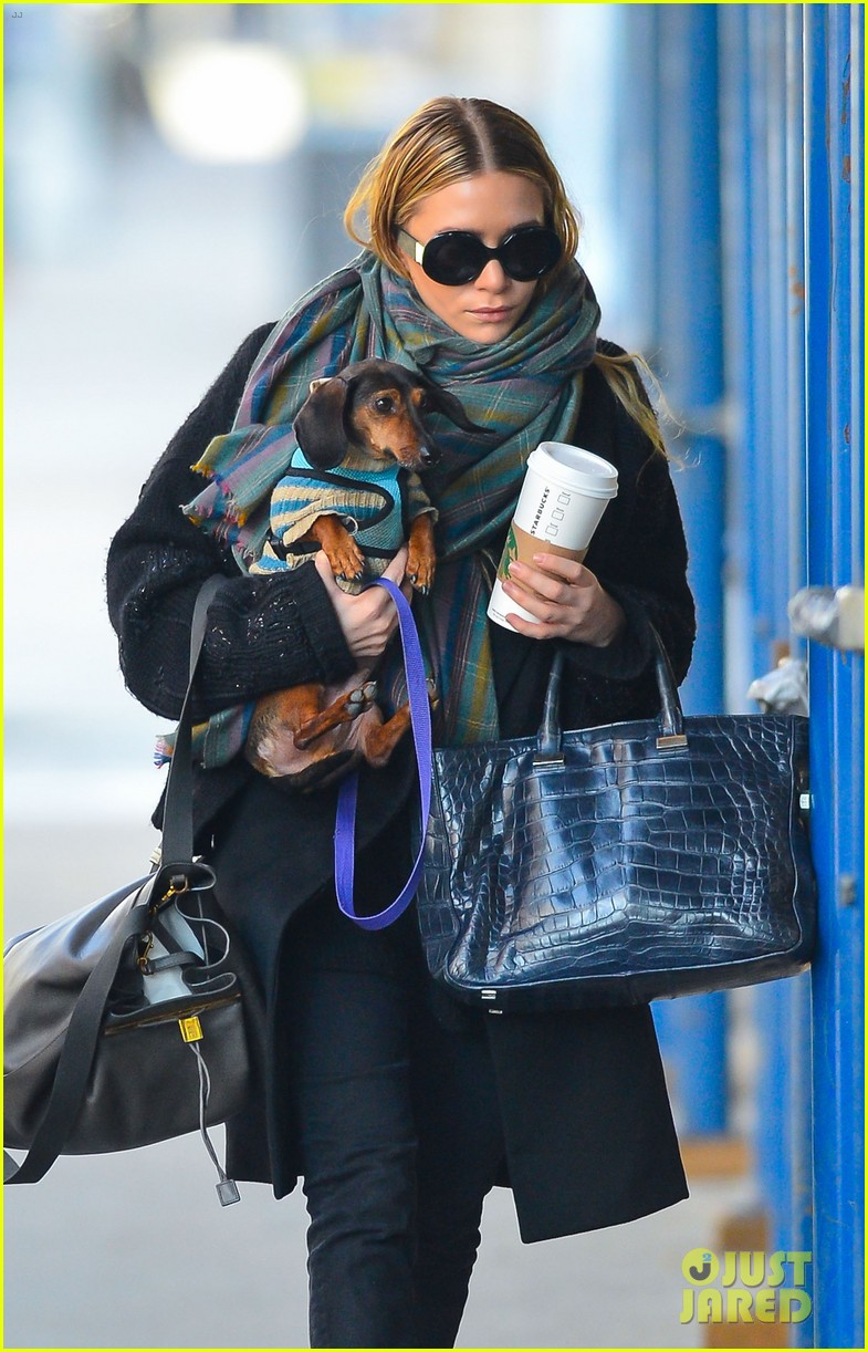 ashley olsen west village walk 102803890