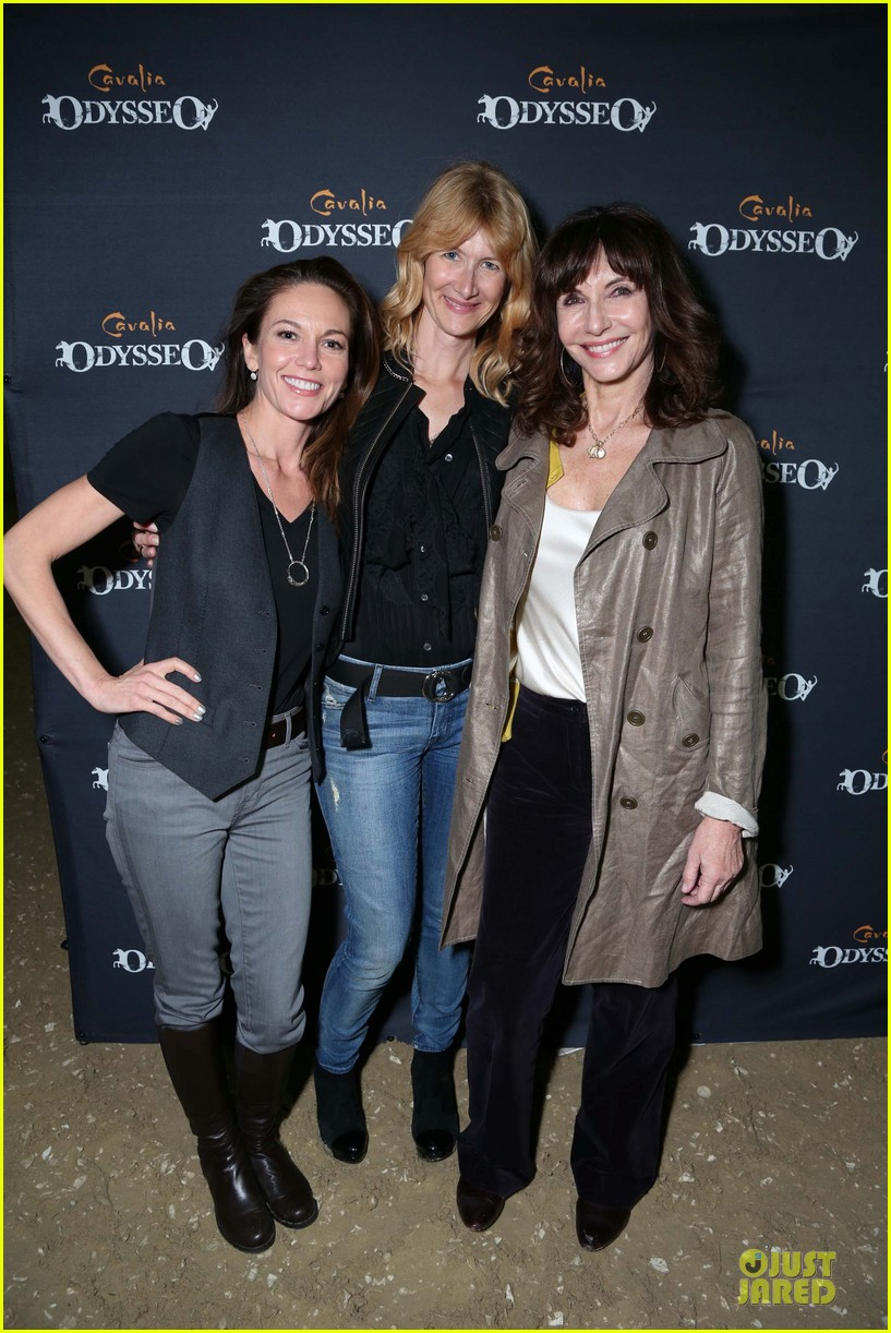 diane lane cavalia odysseo opening after divorce 052823704