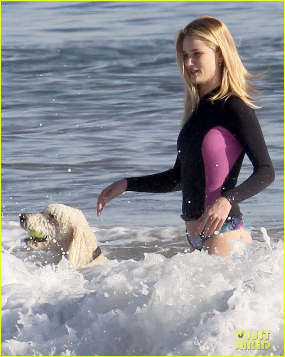 rosie huntington whiteley beach day with her pup 112823993