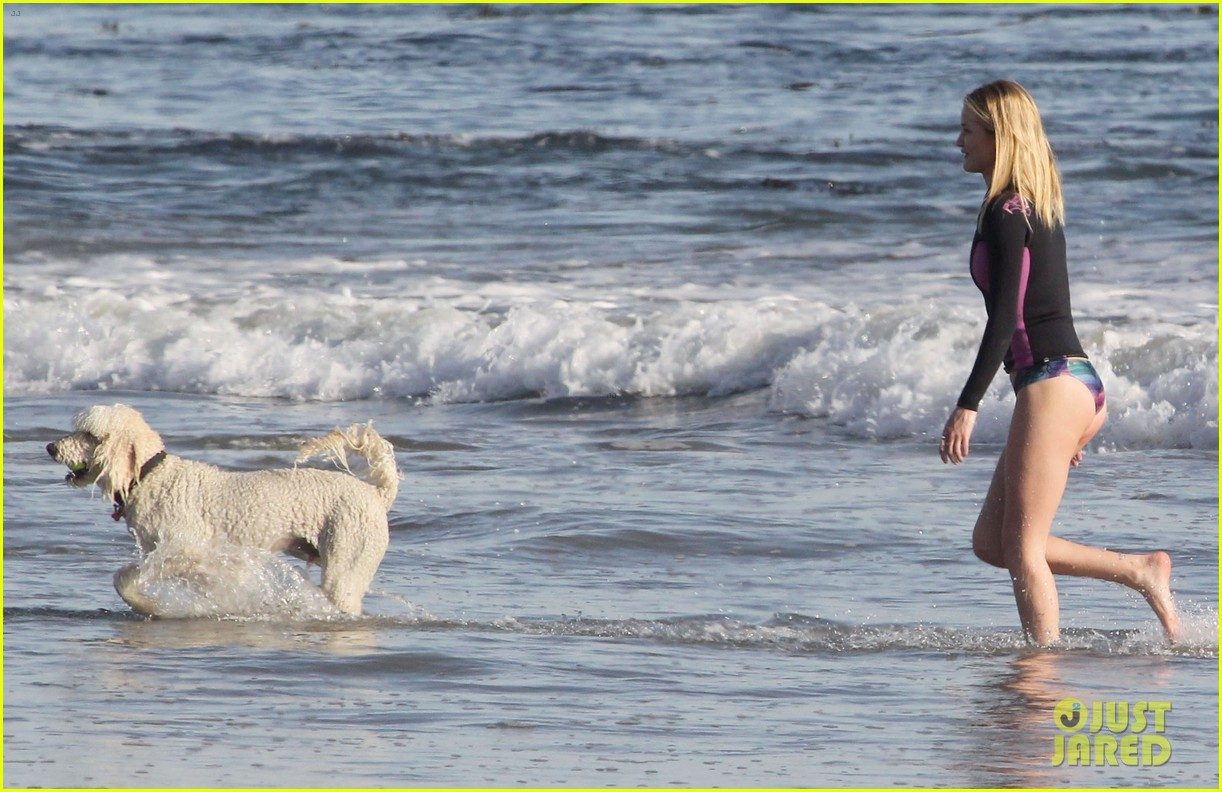 rosie huntington whiteley beach day with her pup 232824005