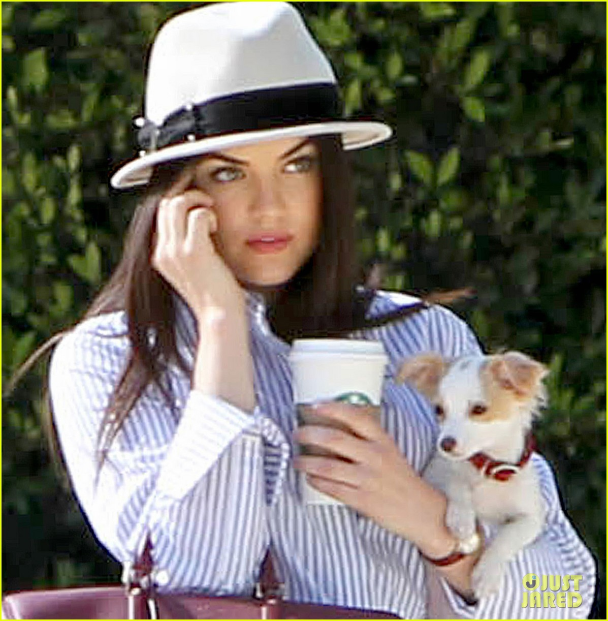 lucy hale photo shoot pretty with puppy 022844849