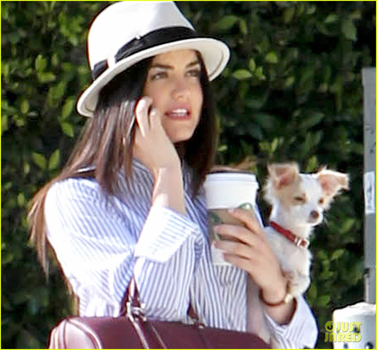 lucy hale photo shoot pretty with puppy 072844854