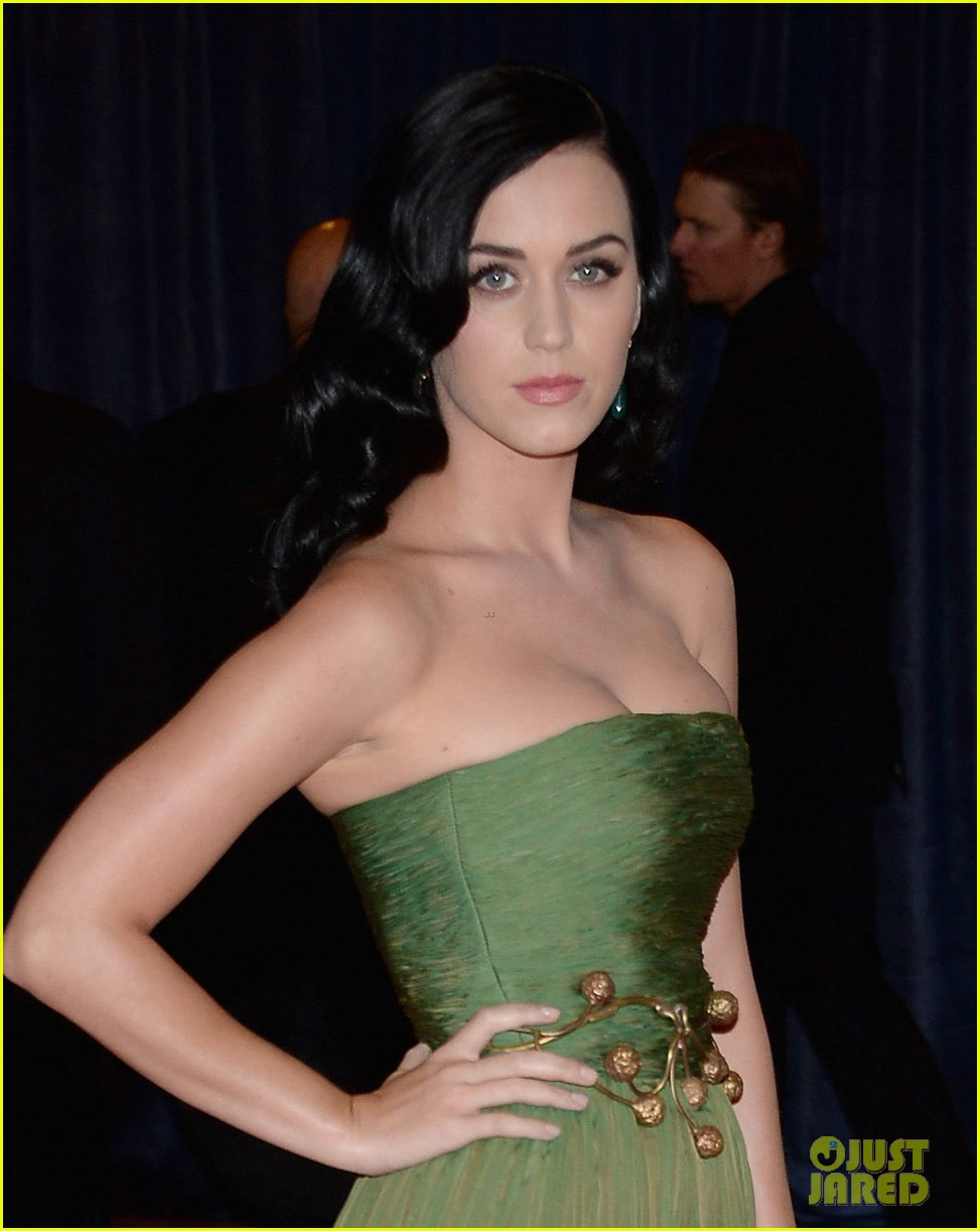 katy perry white house correspondents dinner 2013 red carpet 022859473