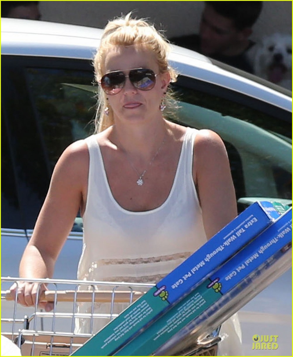 britney spears petsmart pet shopping 082854216