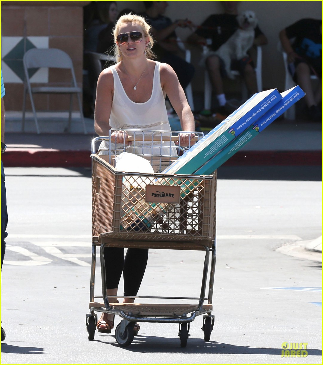 britney spears petsmart pet shopping 132854221