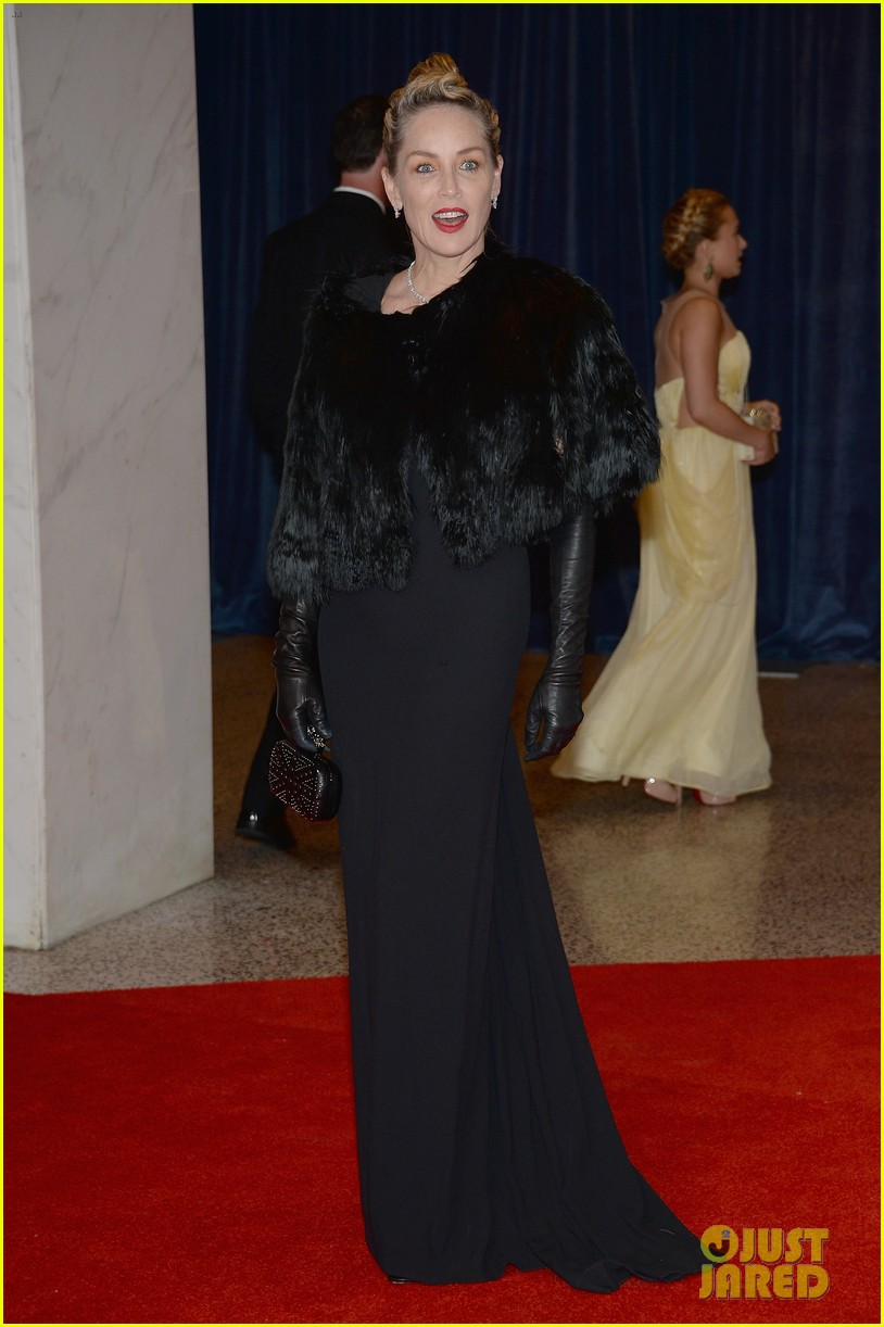 sharon stone white house correspondents dinner 2013 032859671
