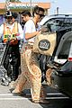 lea michele sheer grocery run cory monteith striped office meeting 03