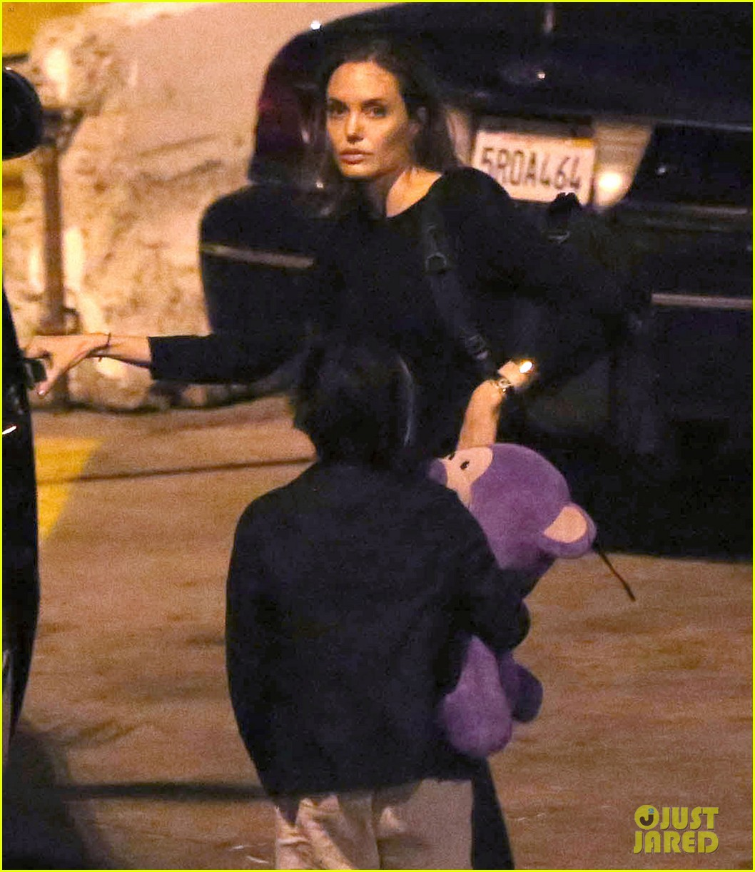 angelina jolie pax lax arrivial after un meeting 062898111