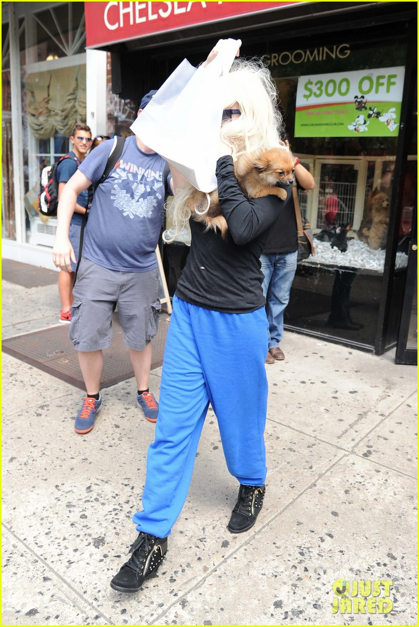 amanda bynes hides face behind dog after court day 012907293