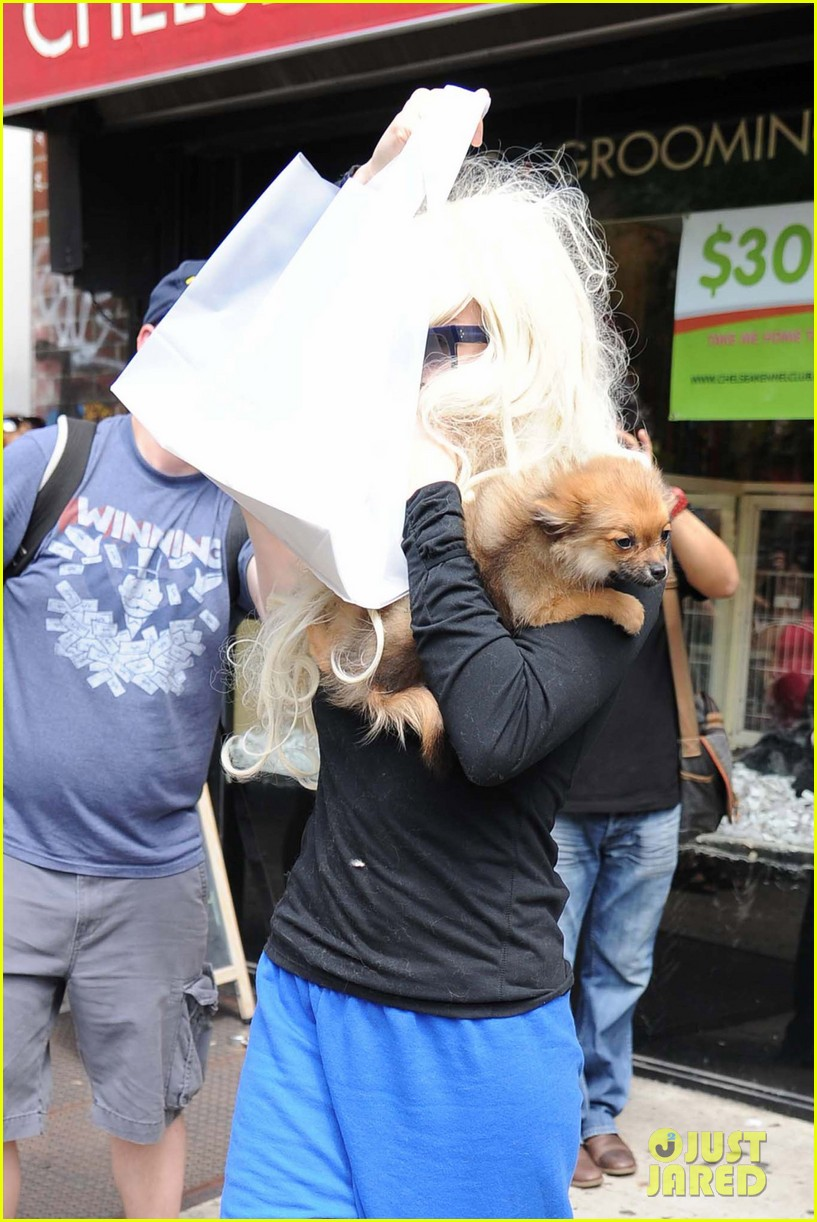 amanda bynes hides face behind dog after court day 022907294