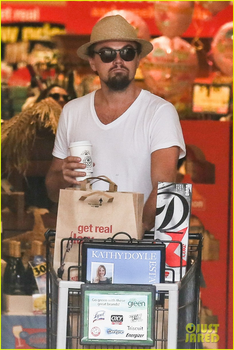 leonardo dicaprio fourth of july grocery shopping 112904002