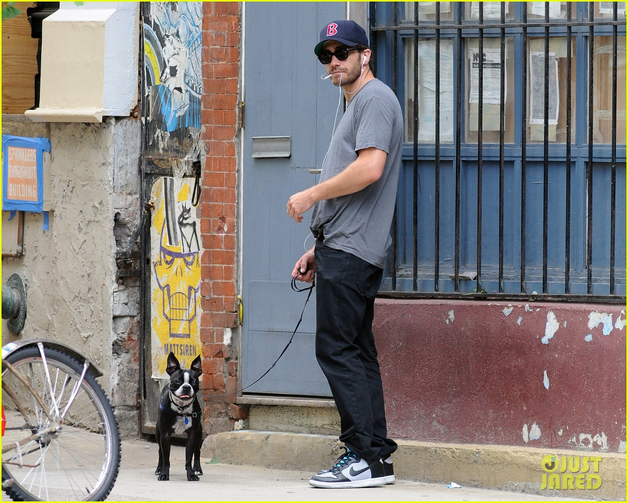 jake gyllenhaal takes his dog for a walk in nyc 012907430