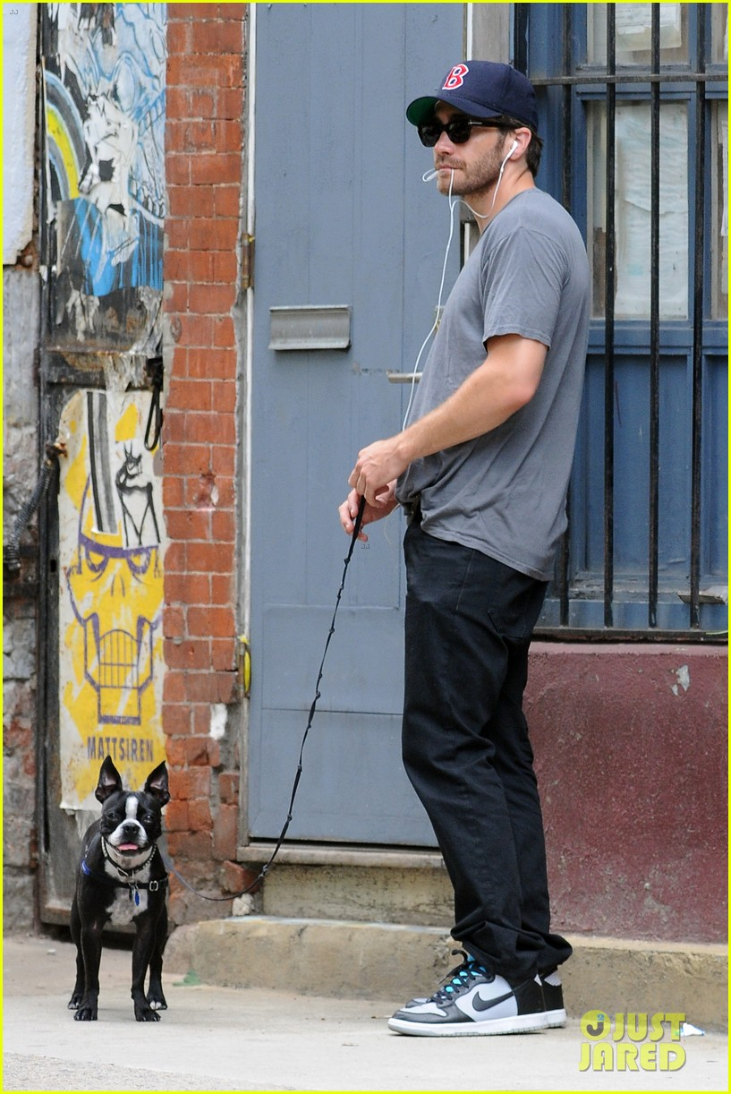 jake gyllenhaal takes his dog for a walk in nyc 212907450