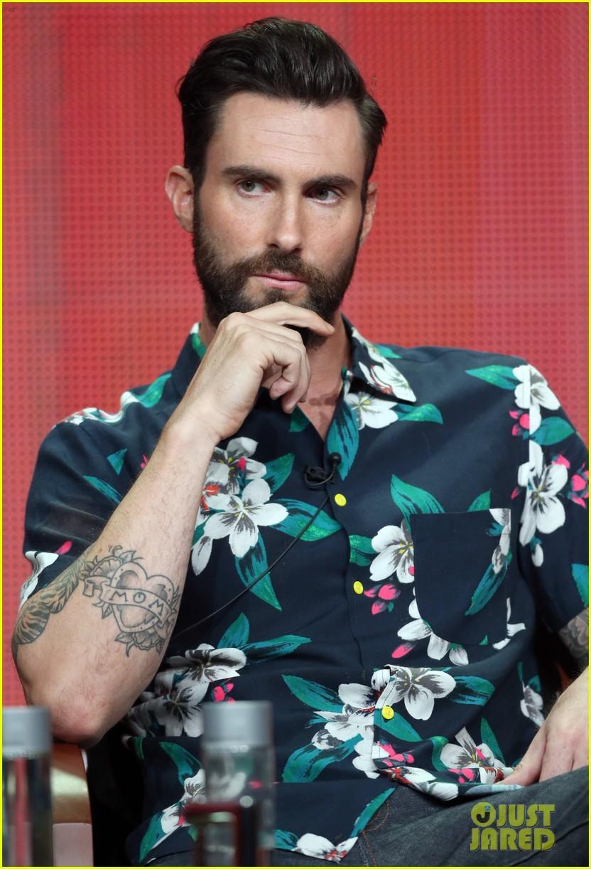 adam levine cee lo green nbc summer tca tour event 172918270