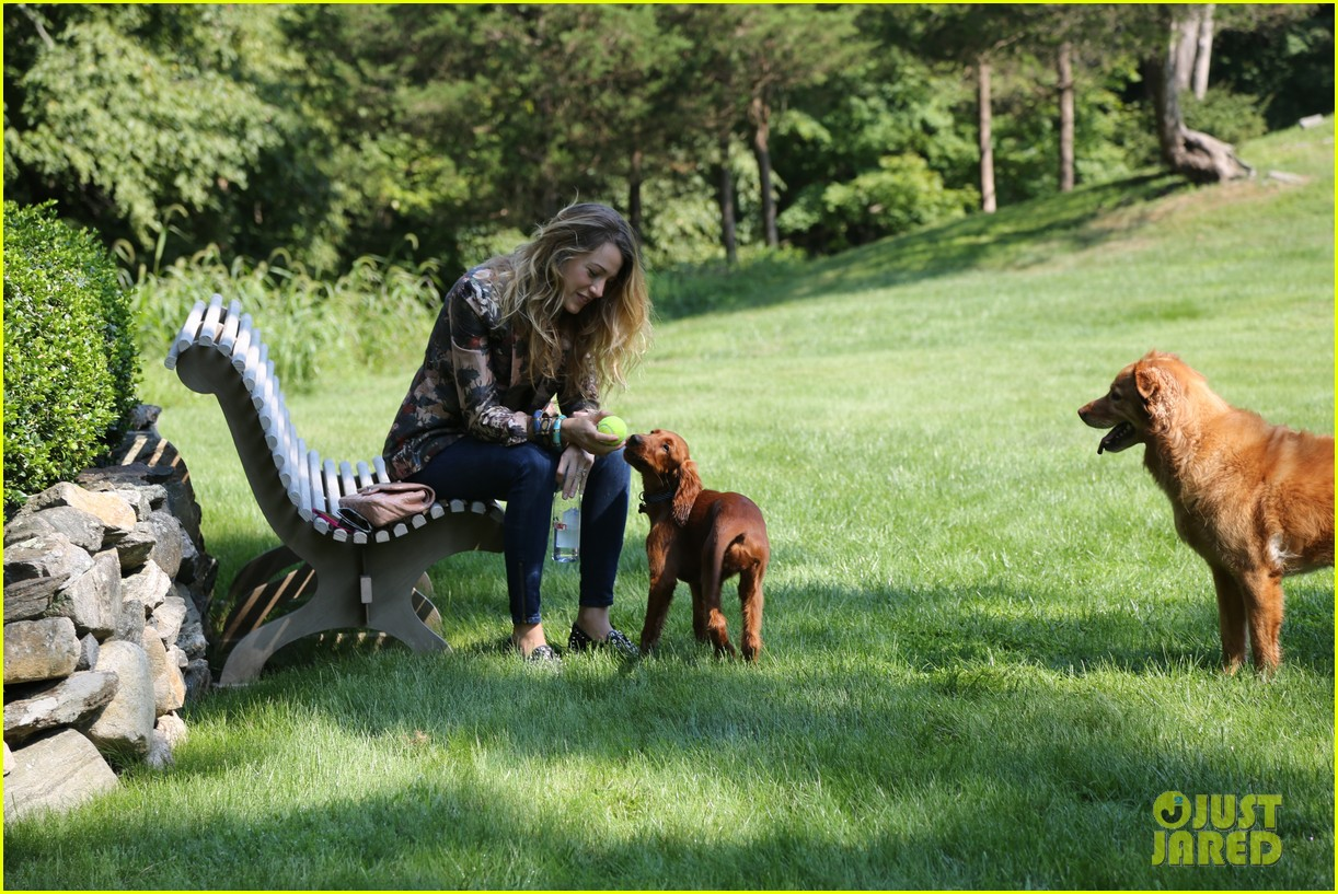 blake lively takes ryan reynolds dog to the park 042940065