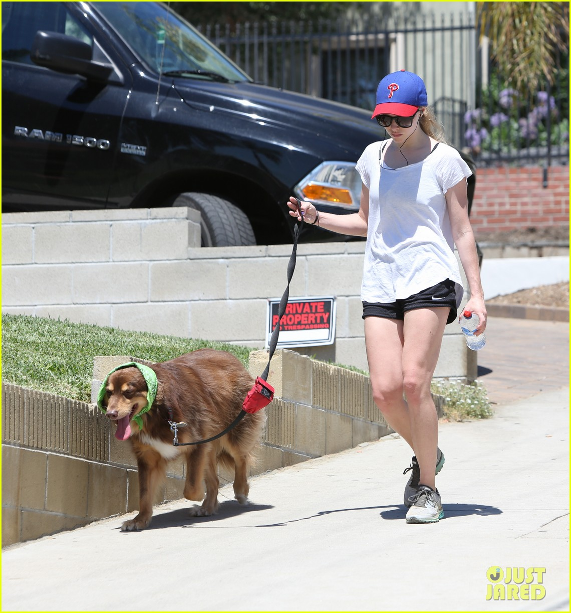 amanda seyfried justin long hang out with finn the dog 352937004