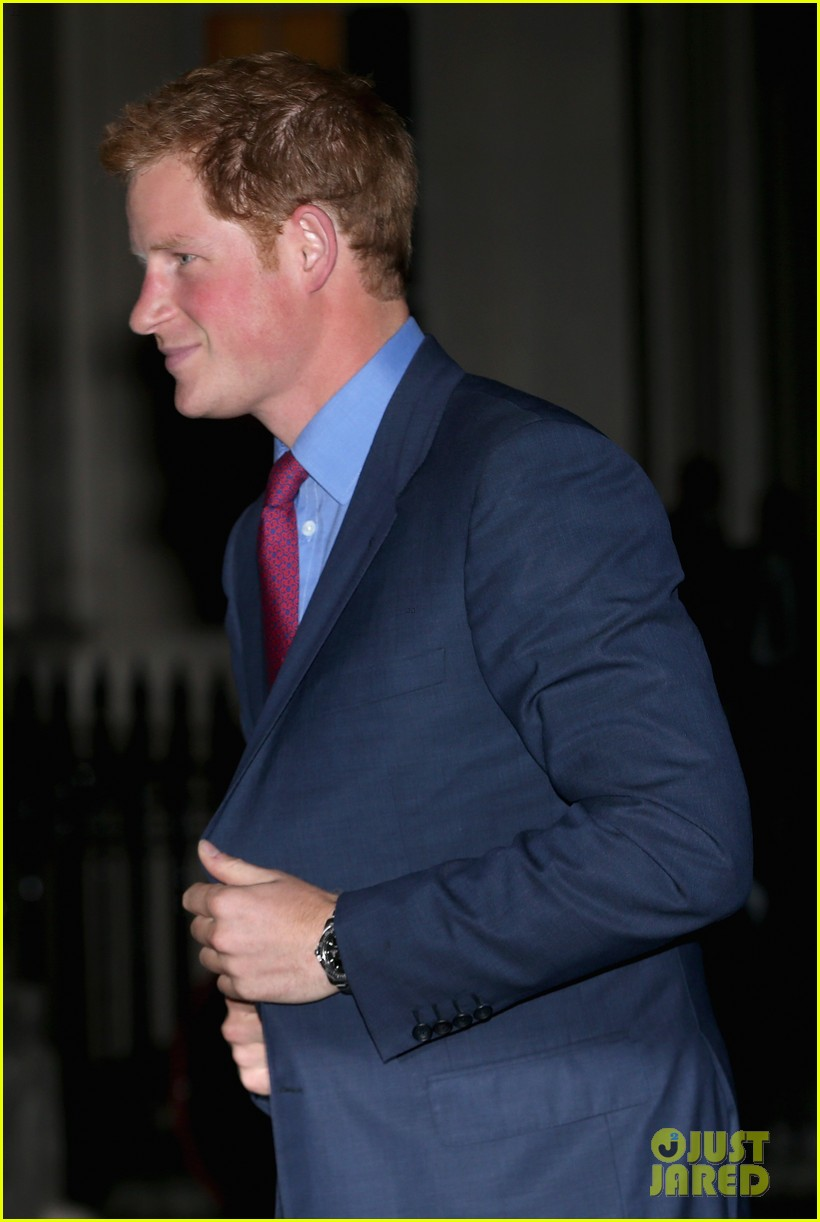 prince harry mapaction reception for charity 052960706