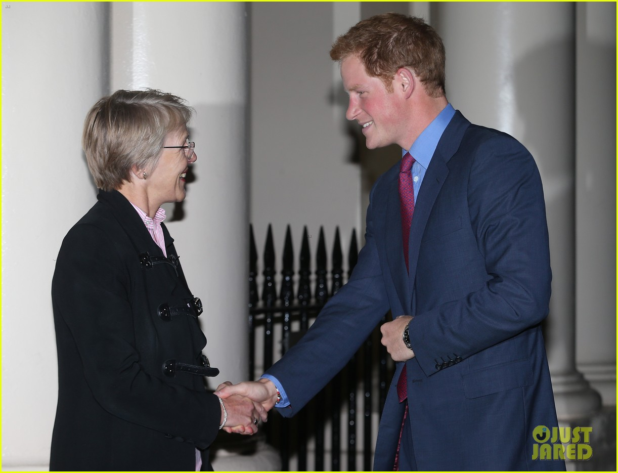prince harry mapaction reception for charity 062960707