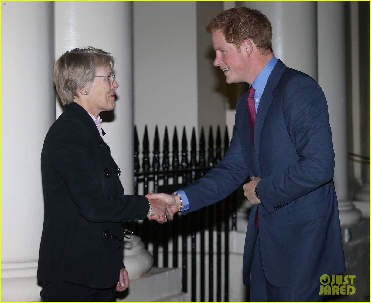prince harry mapaction reception for charity 082960709