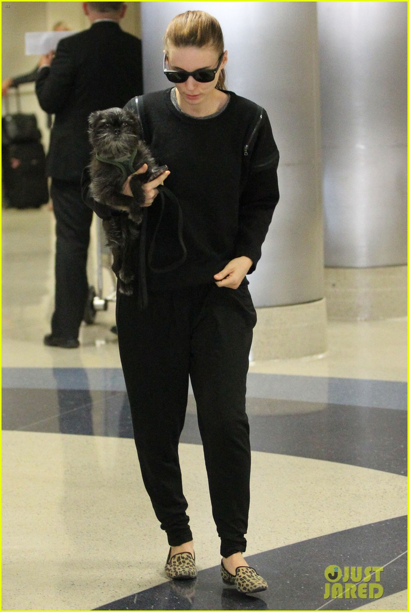 rooney mara holds pet pooch close at the airport 022960775