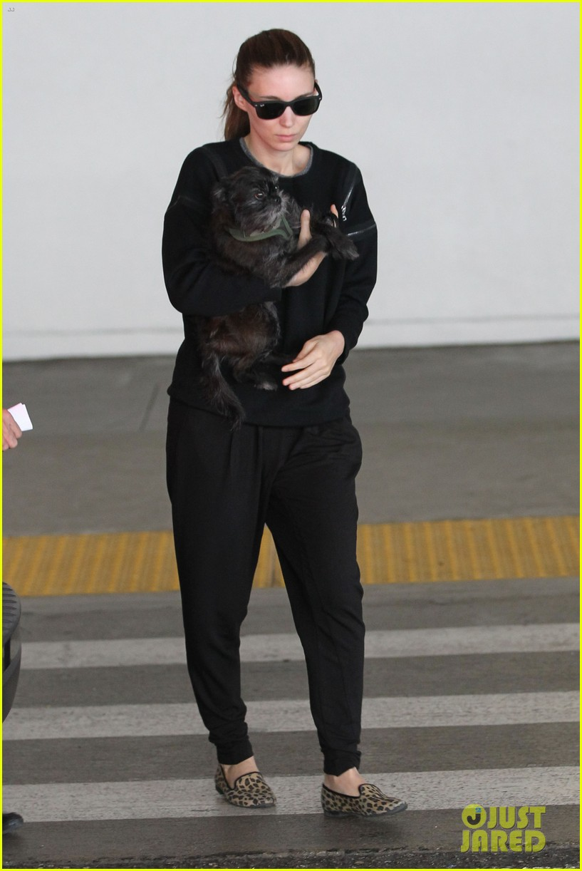 rooney mara holds pet pooch close at the airport 032960776