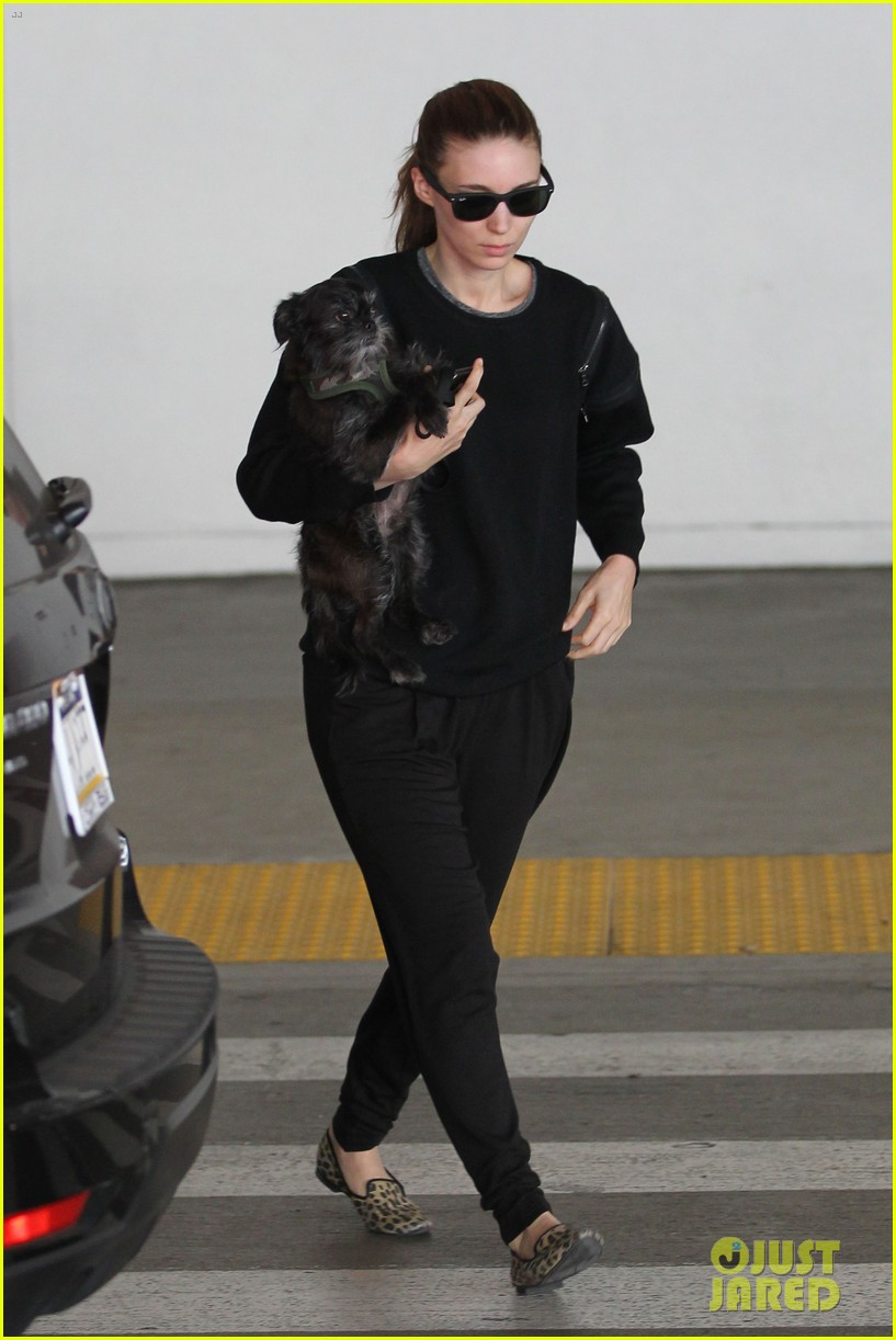 rooney mara holds pet pooch close at the airport 102960783