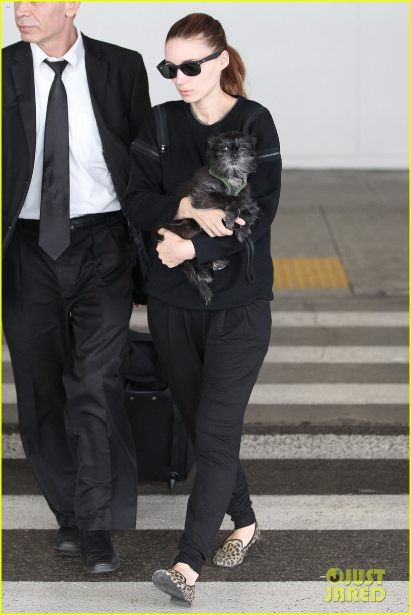 rooney mara holds pet pooch close at the airport 132960786