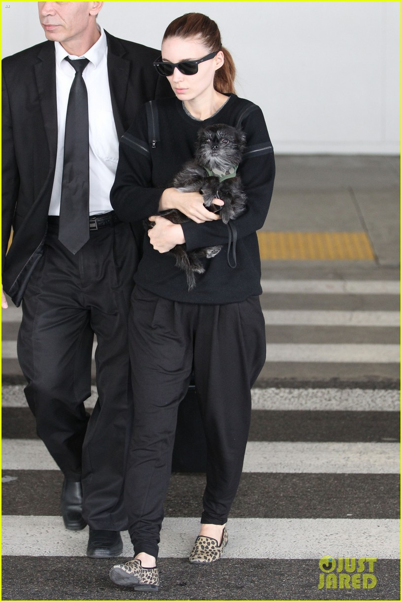 rooney mara holds pet pooch close at the airport 142960787
