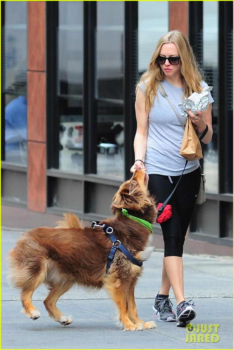 amanda seyfried immortality for her dog finn 14