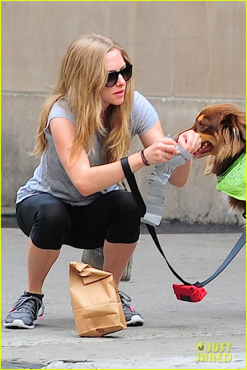 amanda seyfried immortality for her dog finn 17