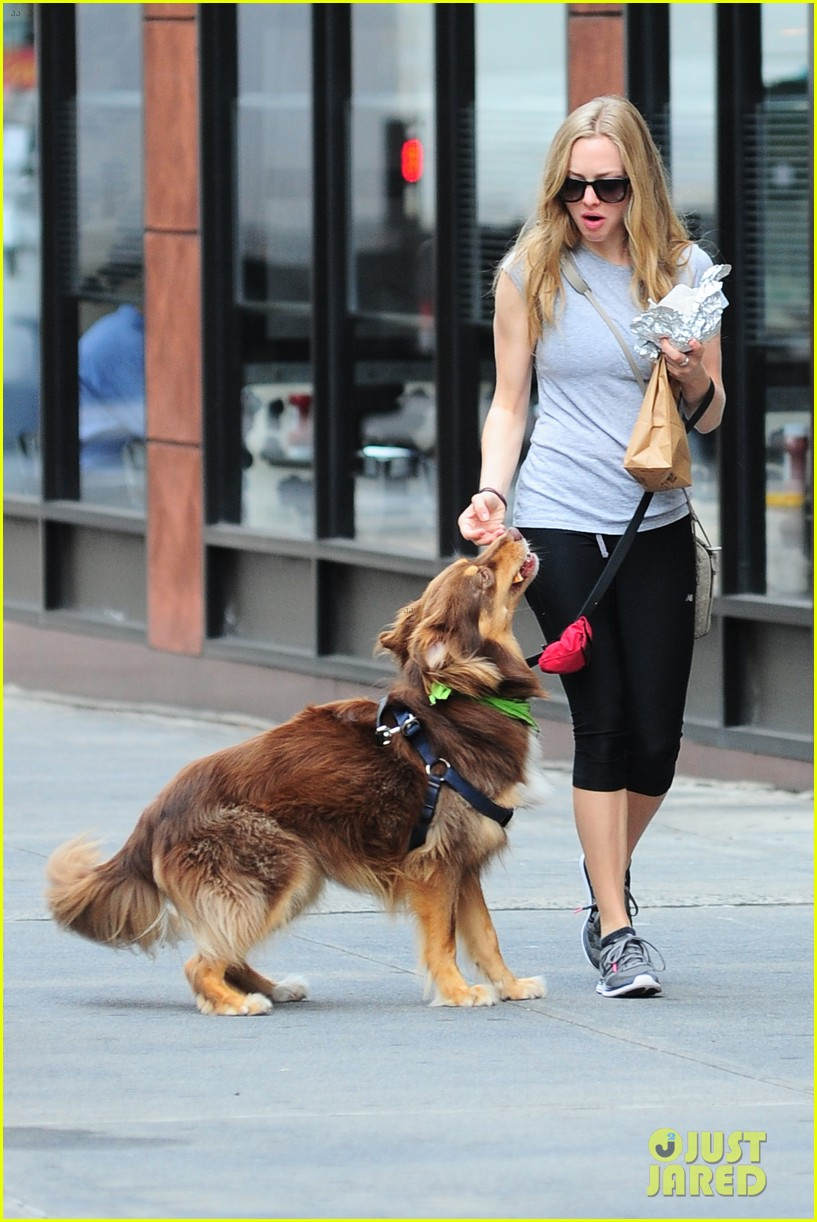amanda seyfried immortality for her dog finn 182951334