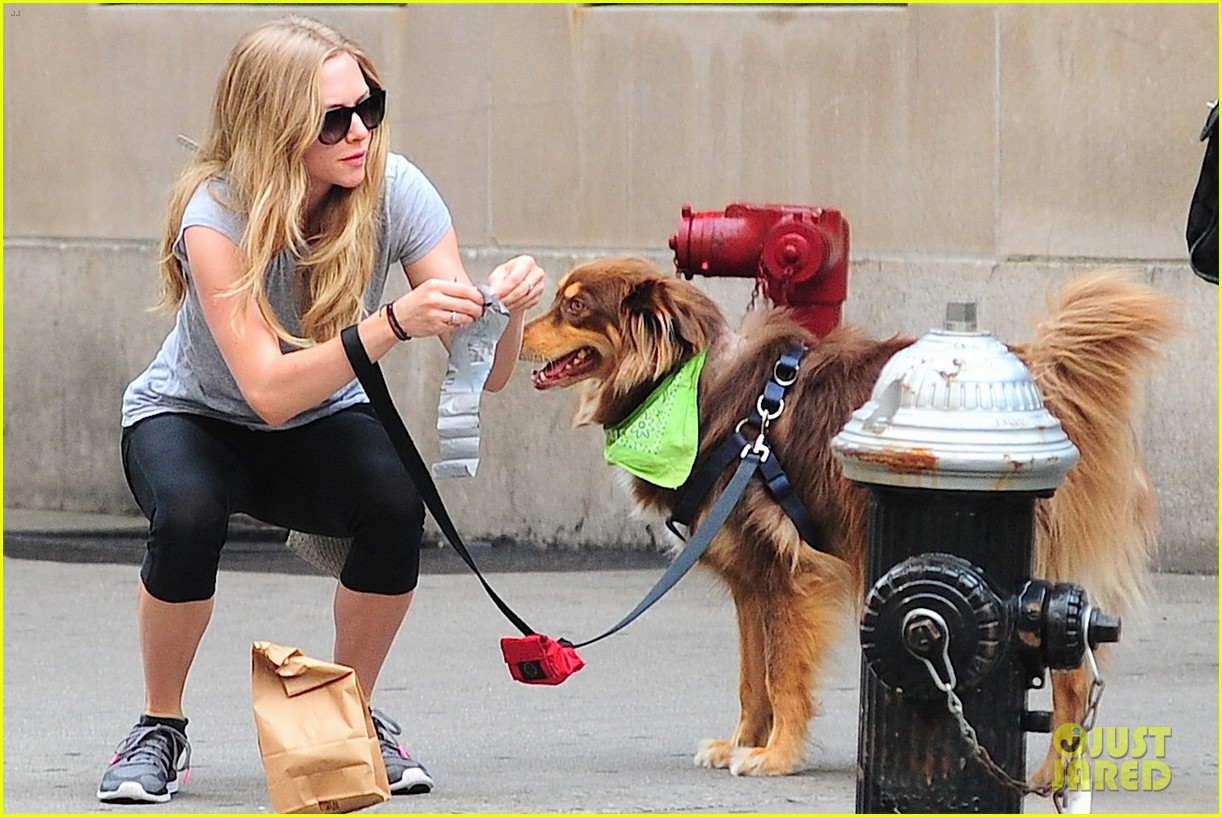 amanda seyfried immortality for her dog finn 192951335
