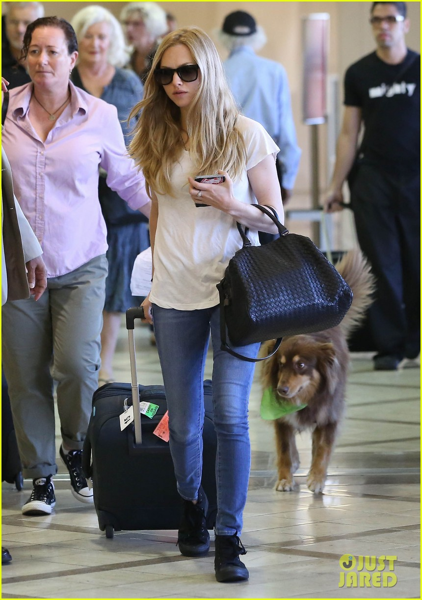 amanda seyfrieds dog finn jumps kisses justin long 062943723