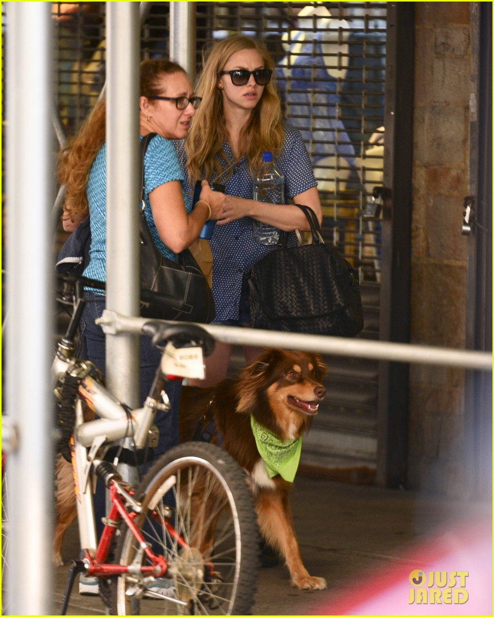 amanda seyfrieds dog finn jumps kisses justin long 16