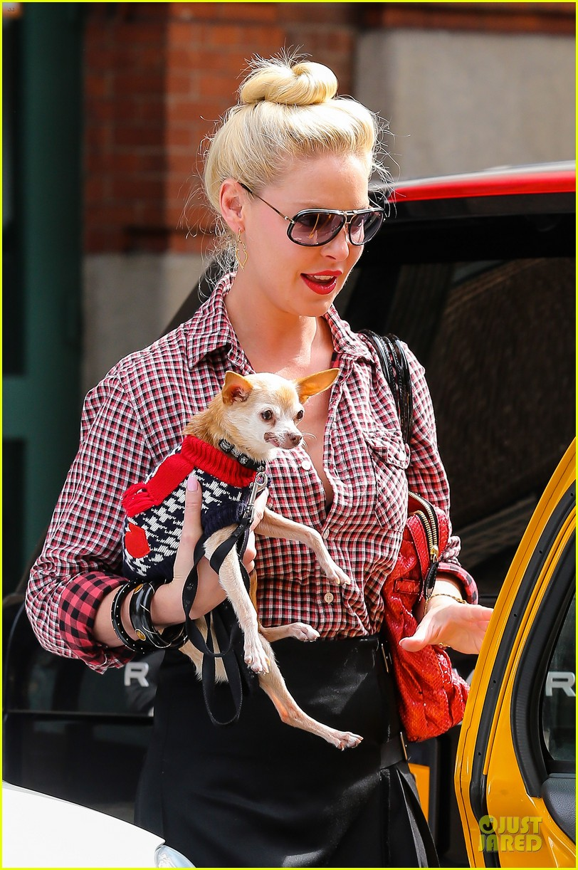 katherine heigl josh kelley hold hands after lunch 092966316