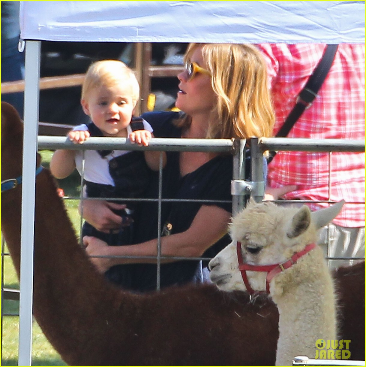 reese witherspoon jim toth brentwood corn festival 422976147
