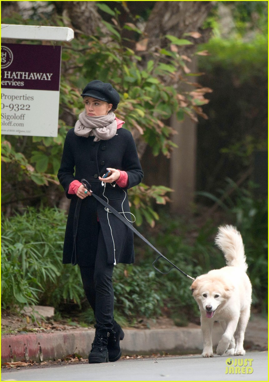suki waterhouse walks bradley cooper dog charlotte 052981925