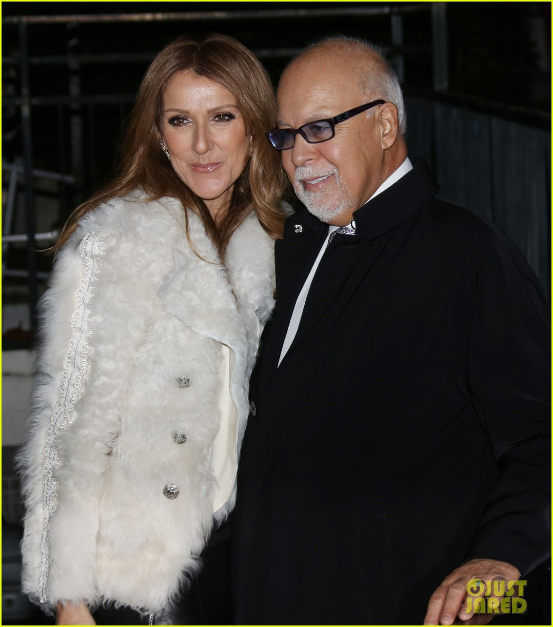 celine dion promotes loved me back to life in france 022992660