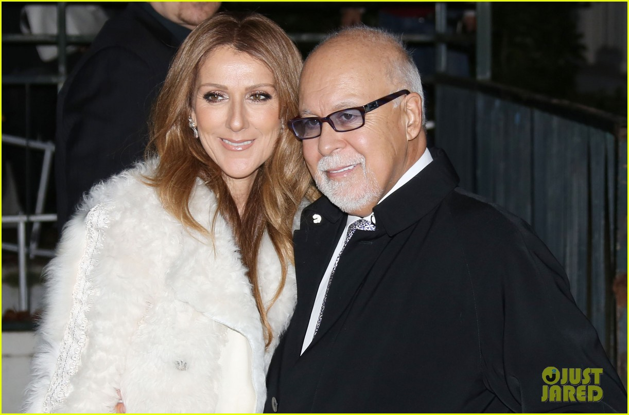 celine dion promotes loved me back to life in france 13
